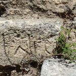 древняяэлефтерна