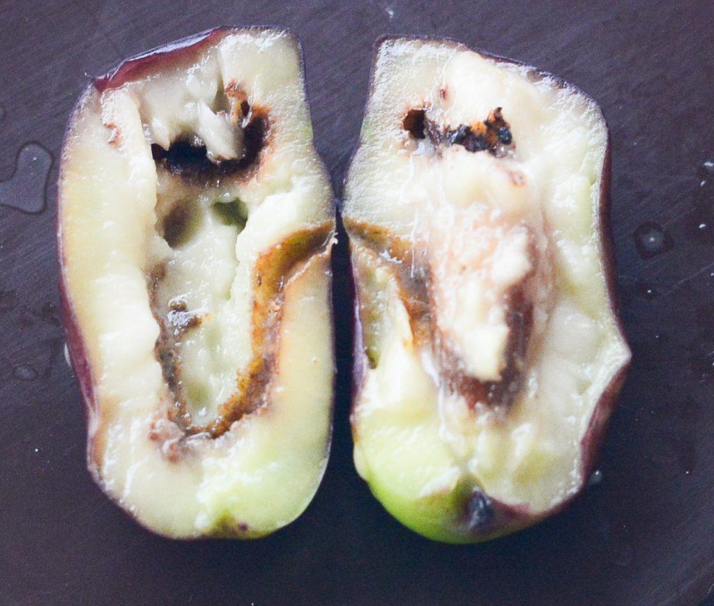 Олива пораженная Дакос